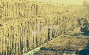 Sự ra đời của Cọc Xi Măng Đất (CDM)